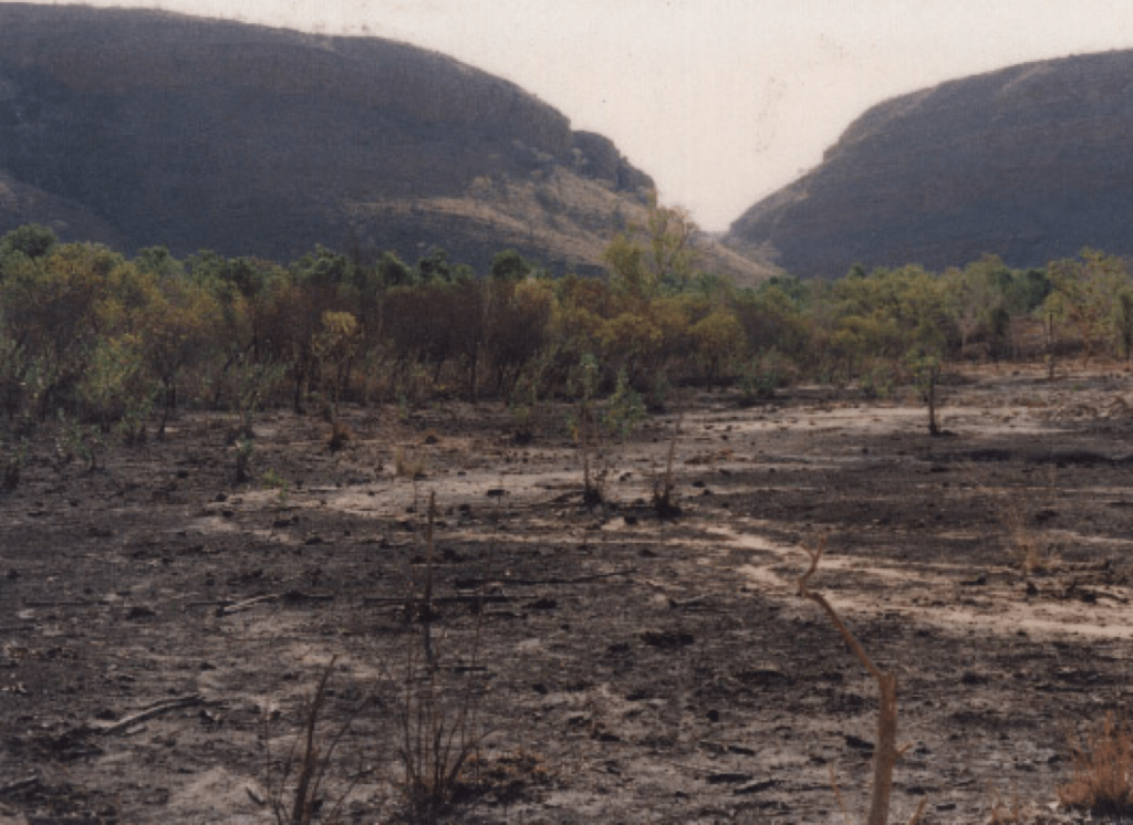 A picture of a desertified field Australia in 1992