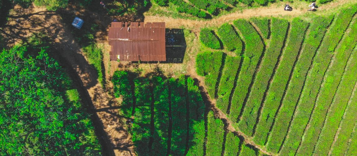 A farm from above